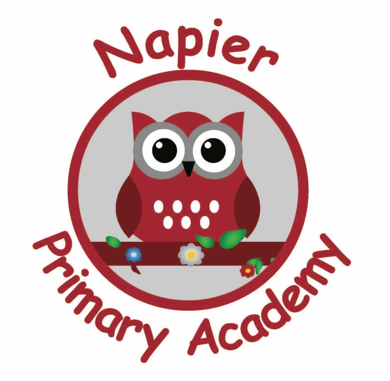 Napier Community Primary and Nursery Academy